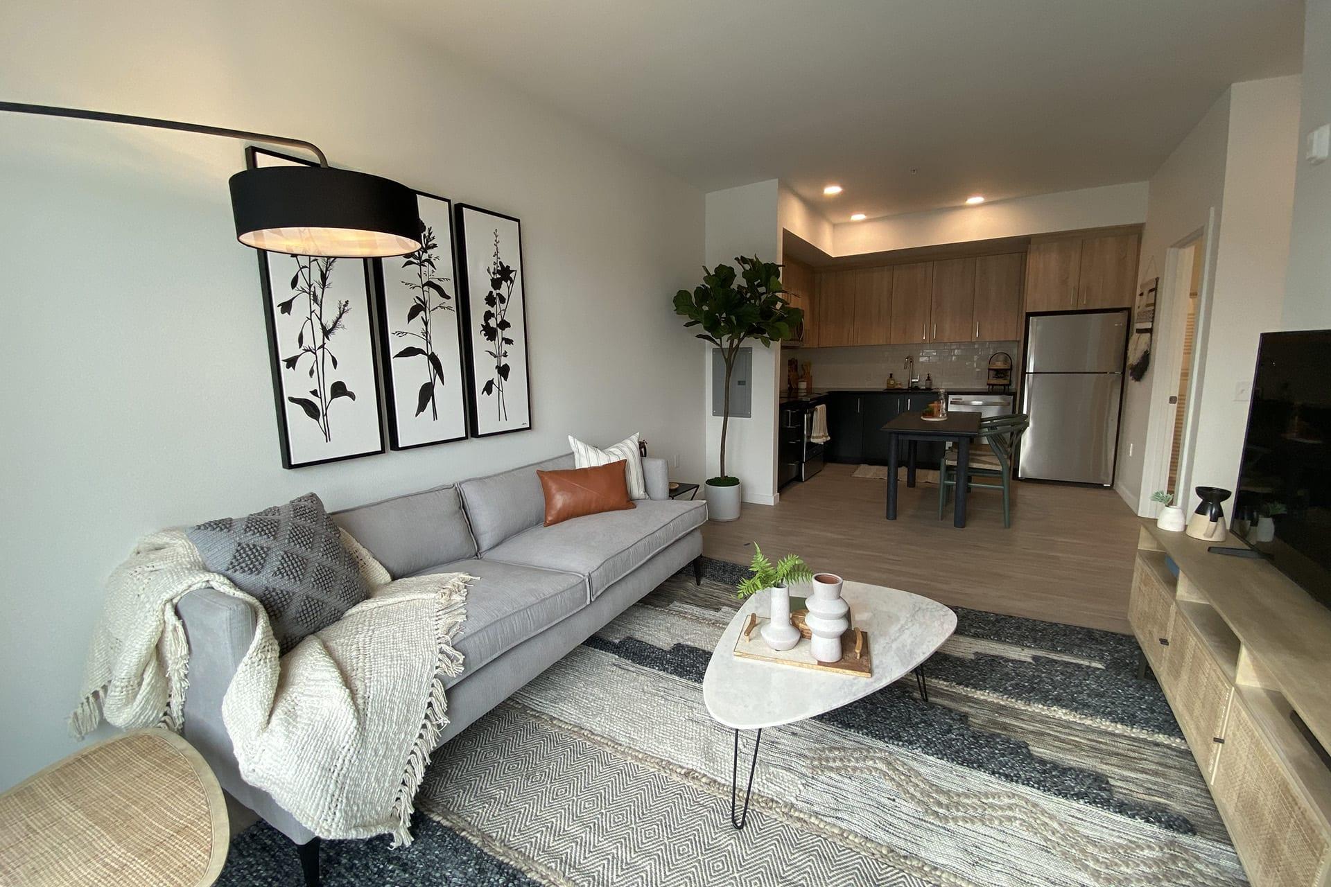 128_livingroom-kitchen